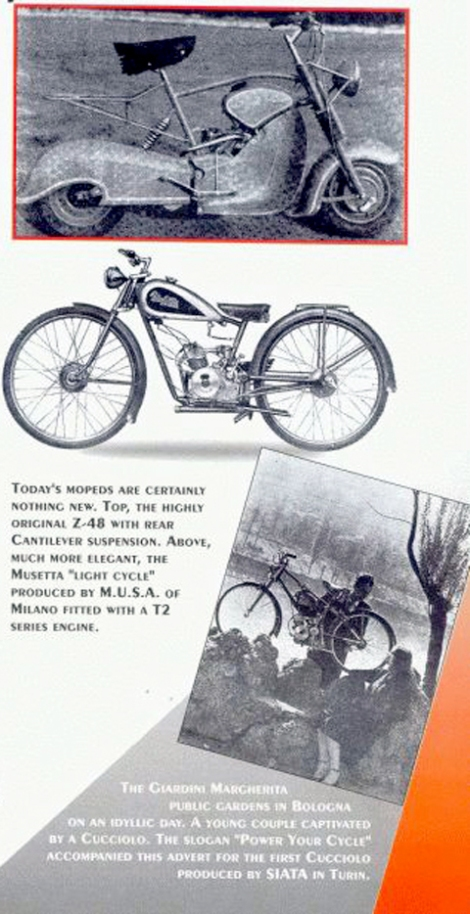 page-4-copy2