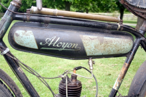 alcyon_BMA6