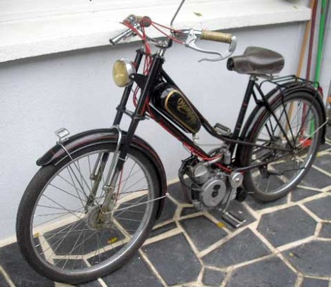 oscar1947cucciolo7